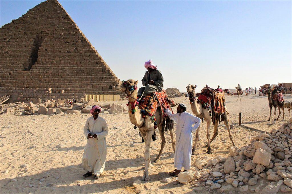 Cairo Egypt Pyramids  Camel
