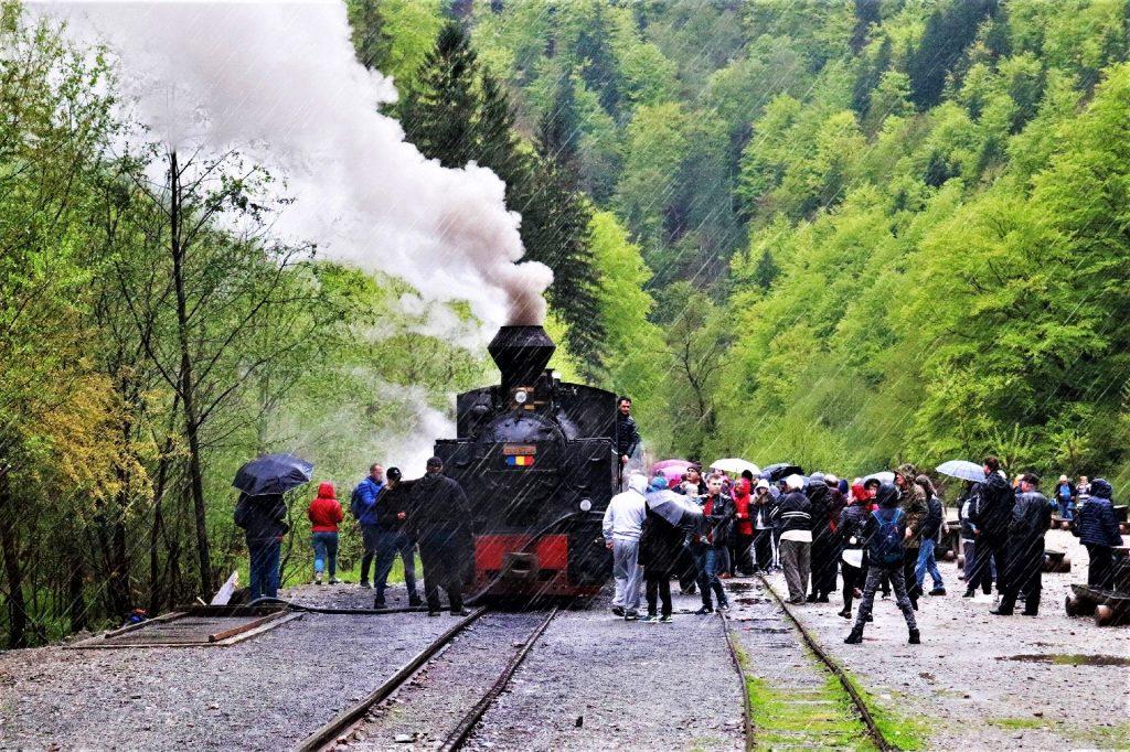 Mocanita Steam Train, Maramures, Northern Romania