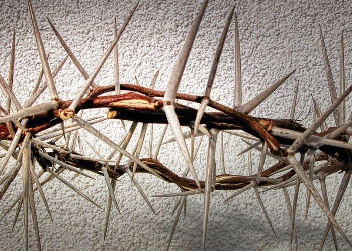 thorn crown crucifixion