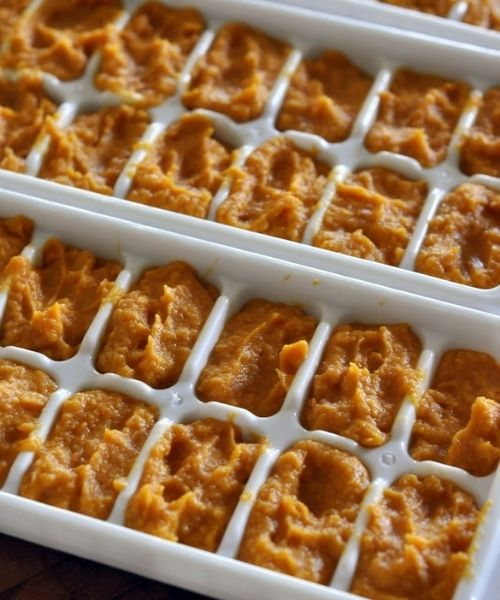 healthy homemade baby foods